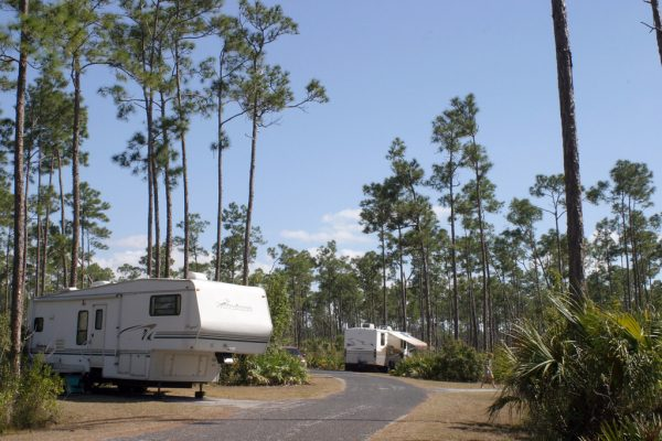 camping-everglades-national-park-long-pine-key-campground