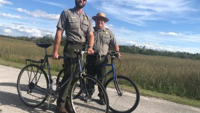 Photo of Fietsen langs alligators bij Shark Valley! Everglades National Park.