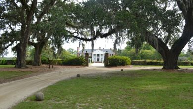 Photo of Boone Hall Plantation. Deze plantage bij Charleston wil je zien!