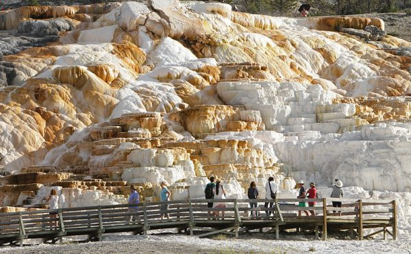 mammoth-hot-springs-yellowstone-national-park