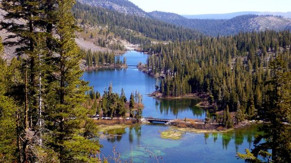 mammoth-lakes-zwemmen