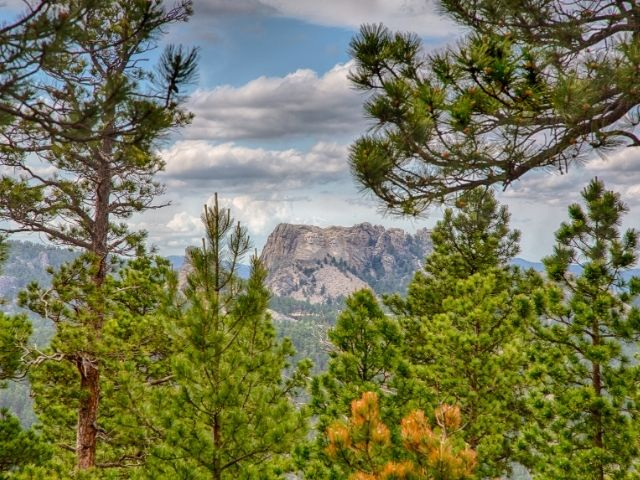 norbeck-overlook-mount-rushmore
